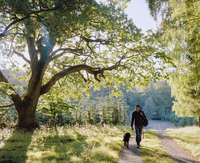 Sweden, Skane, Maltesholm, Man walking with dog