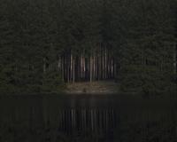 Sweden, Skane, Christinehof, Trees on riverbank at night 11090017400| 写真素材・ストックフォト・画像・イラスト素材|アマナイメージズ