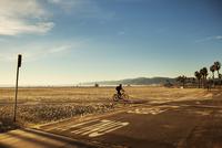 USA, California, Los Angeles, Venice Beach, One person cycling along beach 11090017441| 写真素材・ストックフォト・画像・イラスト素材|アマナイメージズ