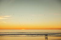 USA, California, Los Angeles, Santa Monica, Scenic sunset over sea