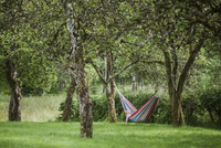 Sweden, Vaster Gotland, Girl (4-5) lying in hammock in garden 11090017769| 写真素材・ストックフォト・画像・イラスト素材|アマナイメージズ