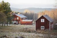 Sweden, Dalarna, Solleron, Red wooden houses in autumn landscape 11090017965| 写真素材・ストックフォト・画像・イラスト素材|アマナイメージズ