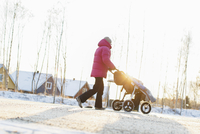 Sweden, Sodermanland, Jarna, Mother pushing boy (2-3) in stroller 11090018136| 写真素材・ストックフォト・画像・イラスト素材|アマナイメージズ