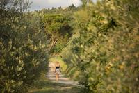 Italy, Tuscany, Dicomano, Woman walking along road in vineyard 11090018172| 写真素材・ストックフォト・画像・イラスト素材|アマナイメージズ