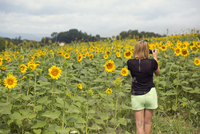 Italy, Tuscany, Woman taking photo of sunflower field