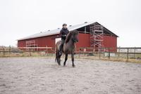 Sweden, Vastra Gotaland, Kungalv, Man horse riding on farm 11090018467| 写真素材・ストックフォト・画像・イラスト素材|アマナイメージズ
