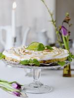 Sweden, Keylime pie on cakestand 11090018519| 写真素材・ストックフォト・画像・イラスト素材|アマナイメージズ