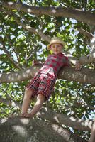 Australia, Queensland, Sunshine Coast, Boy (6-7) standing on tree branch 11090018684| 写真素材・ストックフォト・画像・イラスト素材|アマナイメージズ
