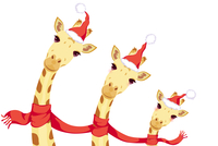 Giraffes celebrating Christmas