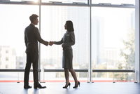 Business person shaking hands
