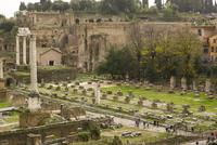 Roman forum,Rome,Italy