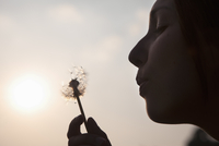 A young woman blowing a dandelion seedhead. Silhouette.