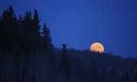 A full moon in a dark blue night sky.  11093004605| 写真素材・ストックフォト・画像・イラスト素材|アマナイメージズ