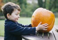 A small boy holding a large orange skinned pumpkin.