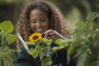 A girl examining a sunflower plant with flowers.