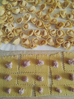 Close up of freshly made Tortellini, pasta dough and filling.