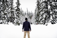 Rear view of a man standing in the snow in a forest in winter. 11093009117| 写真素材・ストックフォト・画像・イラスト素材|アマナイメージズ