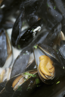 Close up of a pan of steamed Black Mussels.