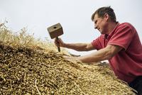 Man thatching a roof, using a wooden mallet. 11093010349| 写真素材・ストックフォト・画像・イラスト素材|アマナイメージズ