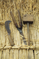 Close up of a wooden mallet, shears and a bill hook on a straw thatched roof.