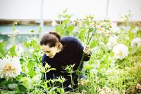 A woman working in an organic flower nursery.