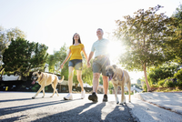 Senior couple wearing shorts walking their dogs along a street in the sunshine. 11093010882| 写真素材・ストックフォト・画像・イラスト素材|アマナイメージズ