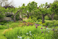 View across a garden with flower beds and trees in Oxfordshire.