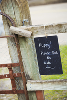 A chalk sign on a garden gate Puppy! Please shut the gate.