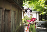 A woman dressed in the traditional geisha style, wearing a kimono and obi, with an elaborate hairstyle and floral hair clips, wi 11093012222| 写真素材・ストックフォト・画像・イラスト素材|アマナイメージズ