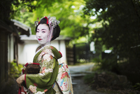 A woman dressed in the traditional geisha style, wearing a kimono and obi, with an elaborate hairstyle and floral hair clips, wi 11093012225| 写真素材・ストックフォト・画像・イラスト素材|アマナイメージズ