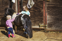A girl and a toddler grooming a pony in a stable. 11093012959| 写真素材・ストックフォト・画像・イラスト素材|アマナイメージズ