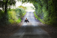 A man using a recumbent three wheeler cycle on a shady country road.