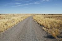 Dirt road through rural farmland