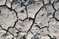 Close up of cracked earth, Black Rock Desert, Nevada