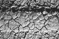 Tire tracks on playa, Black Rock Desert, Nevada 11093013419| 写真素材・ストックフォト・画像・イラスト素材|アマナイメージズ