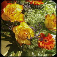 Bouquet with roses and gerberas 11094000077| 写真素材・ストックフォト・画像・イラスト素材|アマナイメージズ