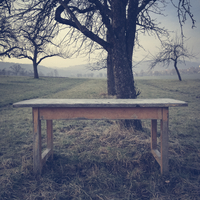 Germany, Baden-Wuerttemberg, Tuebingen, table in orchard