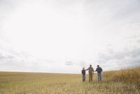 Multi-generation family walking in sunny wheat field