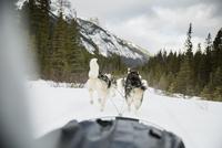 Dogsled on the move below snowy mountains 11096007253| 写真素材・ストックフォト・画像・イラスト素材|アマナイメージズ