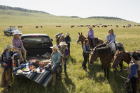 Female ranchers with horses enjoying truck bed picnic