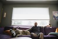 Man on sofa petting dog and cat 11096013696| 写真素材・ストックフォト・画像・イラスト素材|アマナイメージズ