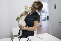 Veterinarian holding cat in clinic examination room 11096017927| 写真素材・ストックフォト・画像・イラスト素材|アマナイメージズ