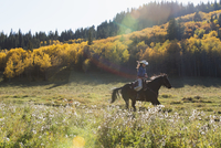 Woman horseback riding in sunny autumnal field