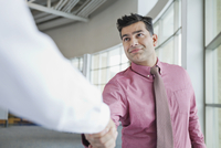 Mature businessman shaking hands with male colleague in office