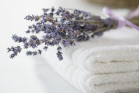 Folded white towels with sprig of lavender.