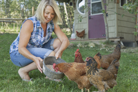 attractive woman feeding chickens on rural property