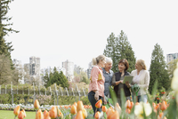 mature women discussing landscaping plans 11096022933| 写真素材・ストックフォト・画像・イラスト素材|アマナイメージズ