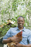 mid-adult african american man holding chicken
