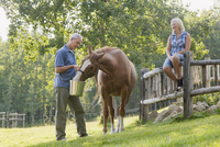 couple on country property feeding horse