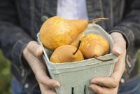 Woman holding fresh pears